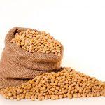 「大豆製品」身近な健康食材・美容食材